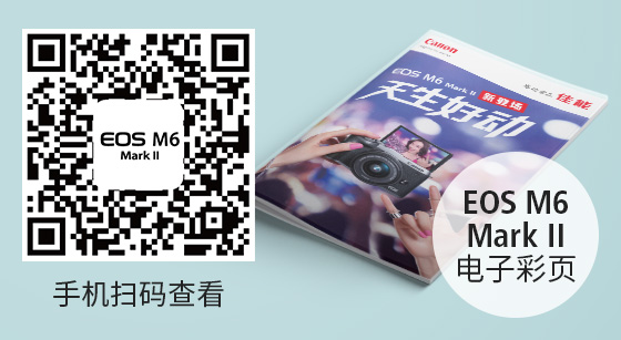 EOS M6 Mark II电子彩页