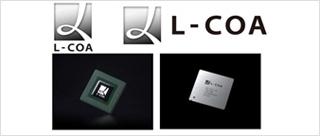 L-COA图像处理技术